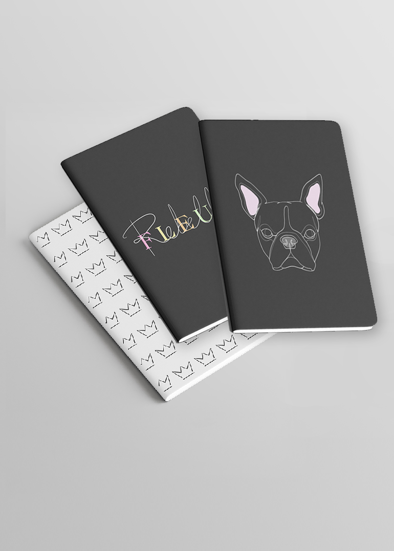 notebooks-set